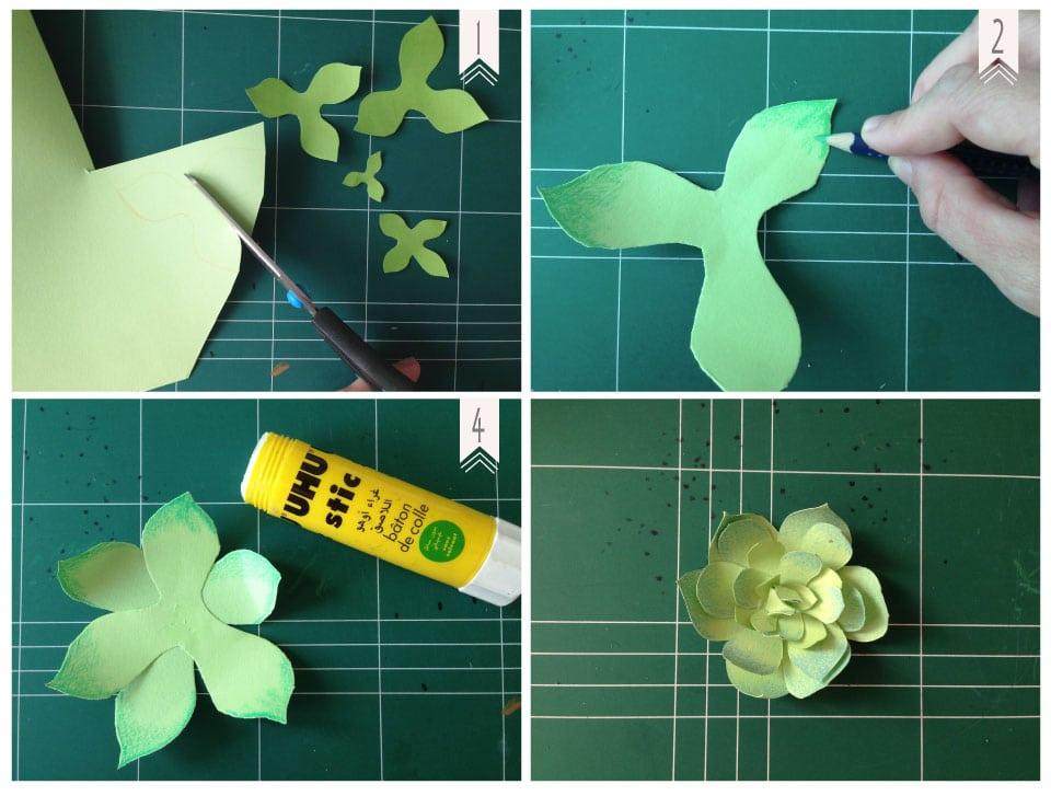 איך להכין פרחי סקולנט מנייר