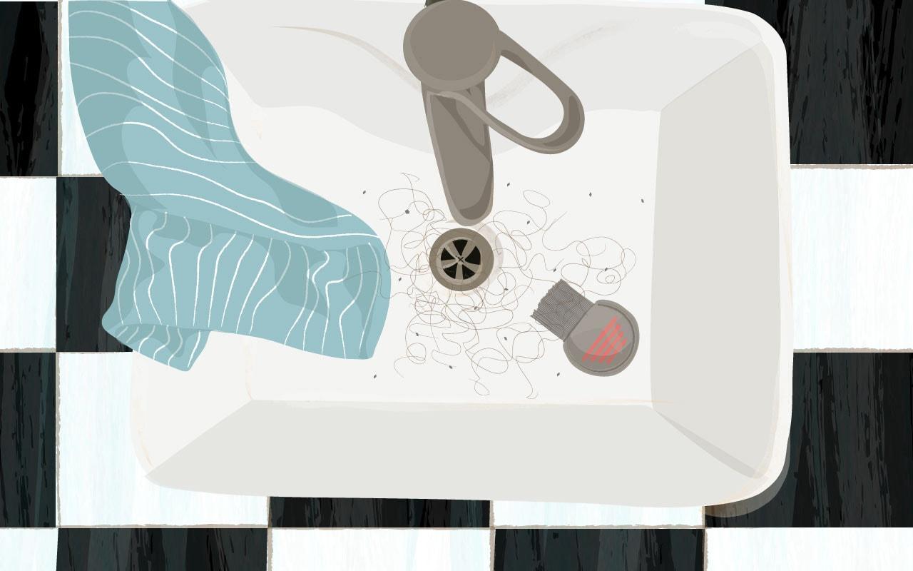 כינים בכיור