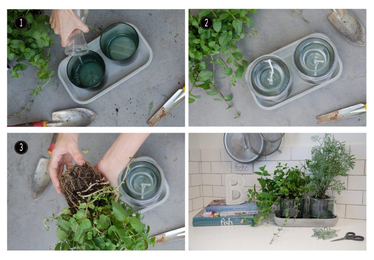 השלבים לשתילת צמחי תבלין בעציצים של ניוד עם מערכת השקייה פנימית